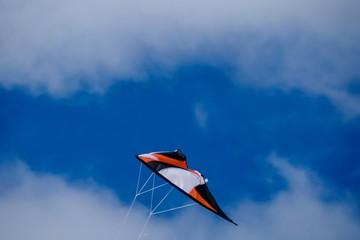 Deurstickers Noord Europa kite in the sky, in Sweden Scandinavia North Europe