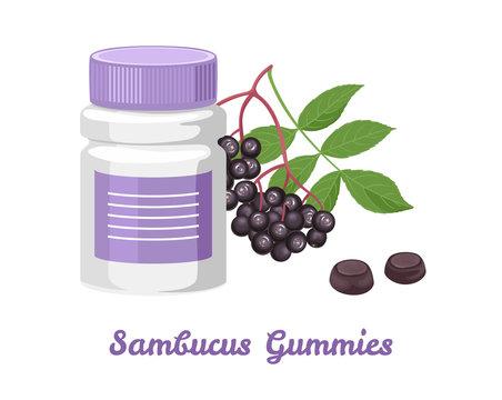 Sambucus Gummies in plastic bottle isolated on white background. Vector illustration of black elderberry branch in cartoon flat style. Antioxidant, dietary Supplement.