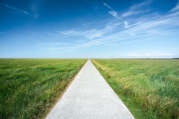 Long straight road along grassland Fotobehang