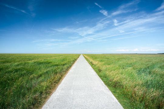 Long straight road along grassland