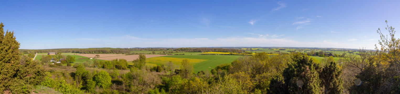 Panoramic view over the southern Sweden (Skåne, Scanian) farm landscape on a spring day with green field and yellow canola rapeseed fields