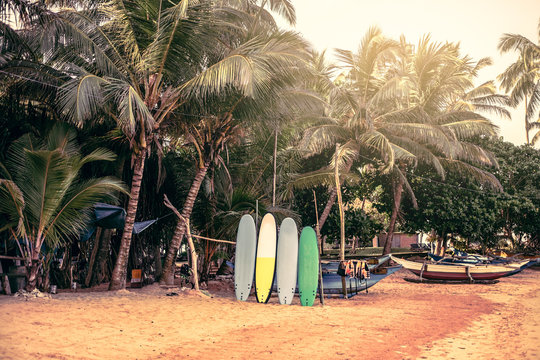 Surfboards resting on a wooden stand in the sand at a surf station in Sri Lanka Hikkaduwa