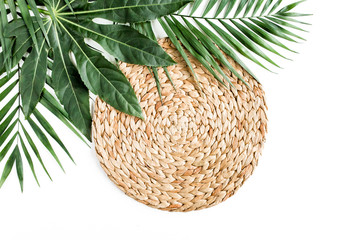 Wall Mural - Tropical palm leaves Aralia isolated on white background. Tropical nature concept.