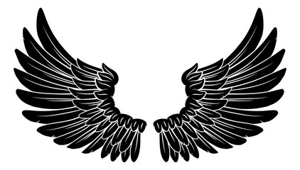 A pair wings like those of an angel or eagle with feathers