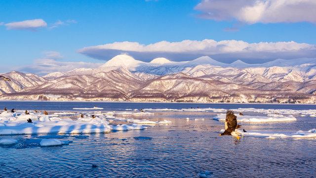 流氷とワシ 風景