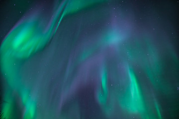 Wall Murals Northern lights Huge green and purple northern lights