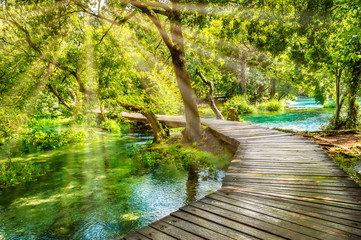 Fotobehang Bomen Wooden footpath over river in forest of Krka National Park, Croatia. Beautiful scene with trees, water and sunrays.