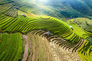 Garden Poster Rice fields Beautiful step of rice terrace paddle field in sunset and dawn at Mam Xoi hill, Mu Cang Chai, Vietnam. Mu Cang Chai is beautiful in nature place in Vietnam, Southeast Asia. Travel concept. Aerial view