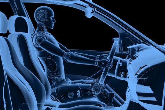x-ray dummy in car