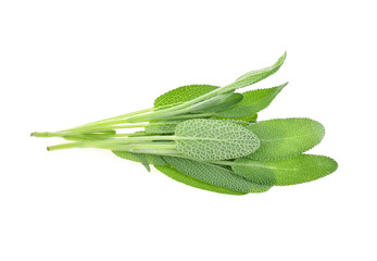 Top view of Sage herb isolated on white background