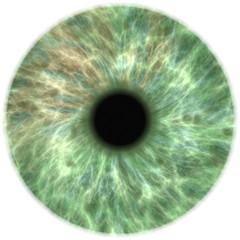 Foto op Aluminium Iris human eye iris