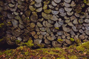 Foto auf Leinwand Brennholz-textur Holzstapel