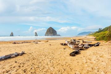 Driftwood on beach of Cannon Beach Oregon USA