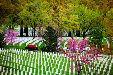 Fototapete - US military cemetery and burial procession on background at spring in Arlington, USA