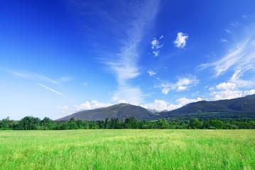 Fototapete - Mountain landscape, view of green field under the blue sky