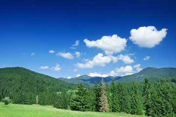 Fototapete - Mountain landscape, view of green hills under the blue sky