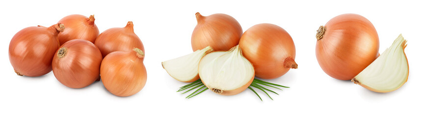 Fototapeta yellow onion isolated on white background close up. Set or collection obraz