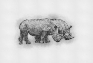Tuinposter Buffel Rhino Drawings. Rhinoceros Animal Drawings. Rhinos Horn on the nose Pencil Sketch Abstract Painting. Modern Digital Art. Wallpaper Background Design. Wall Art. Canvas Painting Best for Home Decor