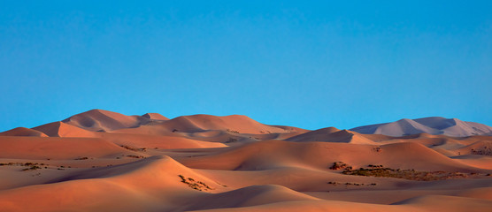 Beautiful Sand dunes in the Gobi desert, Mongolia. View of the beautiful sand dunes.