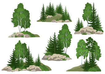 Set Landscapes, Isolated on White Background Coniferous and Deciduous Trees and Grass on the Rocks. Vector