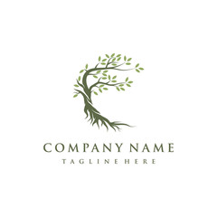 Tree and roots logo design vector isolated, abstract mangrove tree logo design