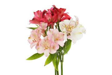 Spoed Fotobehang Bloemen Bunch of alstroemeria flowers