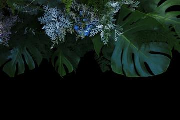 Wall Mural - Flower arrangement nature backdrop of tropical foliage plants bush  Monstera, Asparagus fern, eucalyptus, Dusty Miller silver plant leaves and blue flowers hydrangea on black background.
