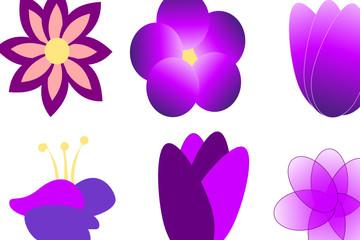 Purple Flower Blossoms, Digital Art