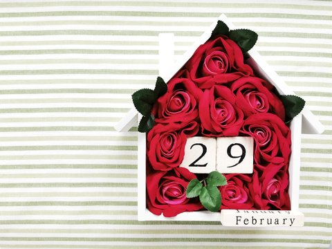 Number 29 shape with roses flowers on striped background. Leap day of 2020 year concept. Flat lay. Top view.