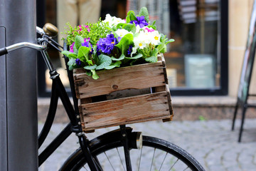 Photo Blinds Bicycle Fahrrad mit Blumen