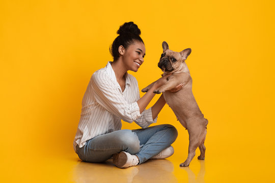 Happy Young African American Woman Playing With Her French Bulldog Puppy