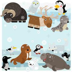 cartoon north pole scene with different animals on ice illustration