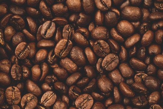 Light roast coffee beans photograph