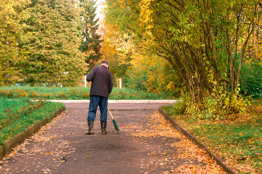 The janitor sweeps the fallen yellow leaves on the road. A man removes leaves from the asphalt with a broom. Clean the paths in the Park.