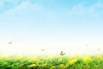 Printed kitchen splashbacks Light blue landscape with grass and blue sky