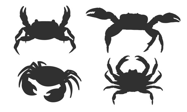Vector silhouette of a crab on a white background.