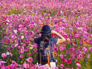Wall Mural - Back view of freedom tourist woman standing in colorful cosmos flower field