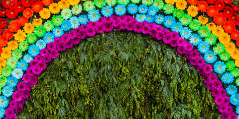 Door stickers Gerbera Floral rainbow made with purple, blue, green, yellow, orange and red daisy gerbera flower in Madeira Flower Festival, Madeira island, Portugal