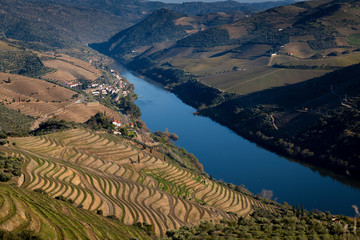 View of the beautiful Douro Valley and the Douro River near the Village of Tua, with the terraced vineayards.