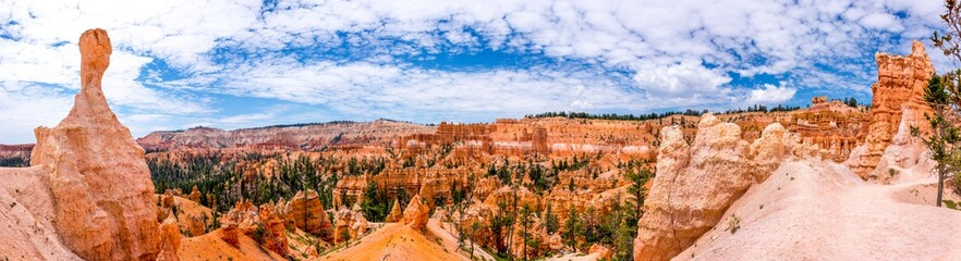 Poster Zalm panoramic picture of bryce canyon