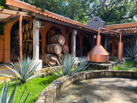 Production of tequila in Mexico. Old factory for the production of tequila. Side view of the barrels of alcohol in the yard of the factory. Concept of tourism and traditions.