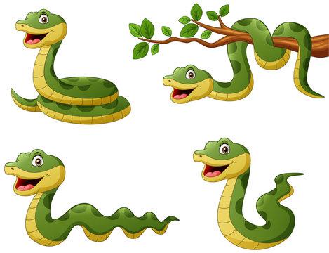 Set of funny green snake cartoon. Vector illustration