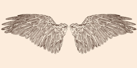 Two spread wings of an angel made of feathers isolated on a beige background. Fototapete