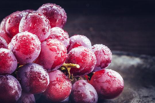 Stillleben von frischen, dunkelroten  Weintrauben mit Wasserspritzern auf dunklem Hintergrund