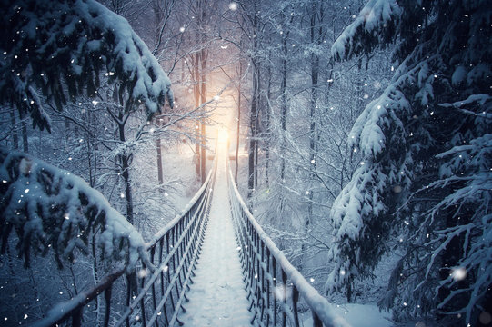 There is a rope bridge deep in the winter forest. Sauerland, North Rhine Westphalia. There is a light at the end of the bridge. Snowfall