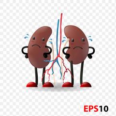 Kidneys. Human internal organ characters