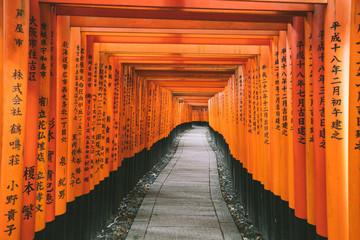 path through orange gates