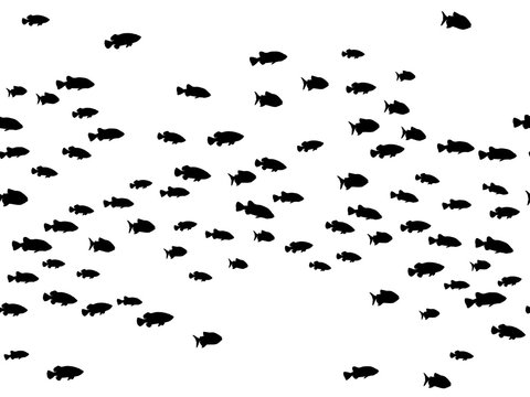 Black school of fish swimming vector illustration