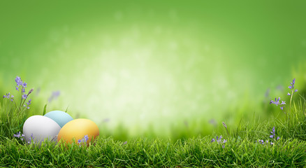 A fresh green spring Easter background with painted eggs on a green grass.