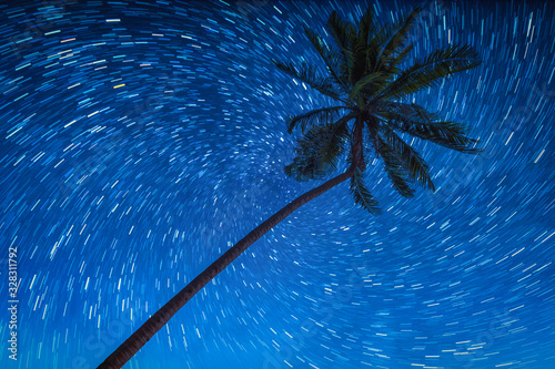 Wall mural Coconut palm trees with star rail on night sky.
